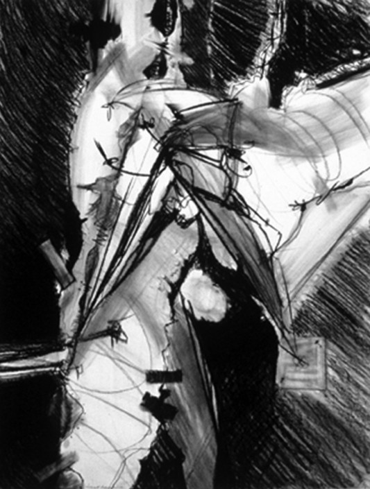 """Hochhauser   """"D163 Major Section""""   Charcoal on paper   40 x 30 in."""